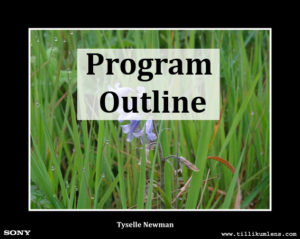 Program Outline button